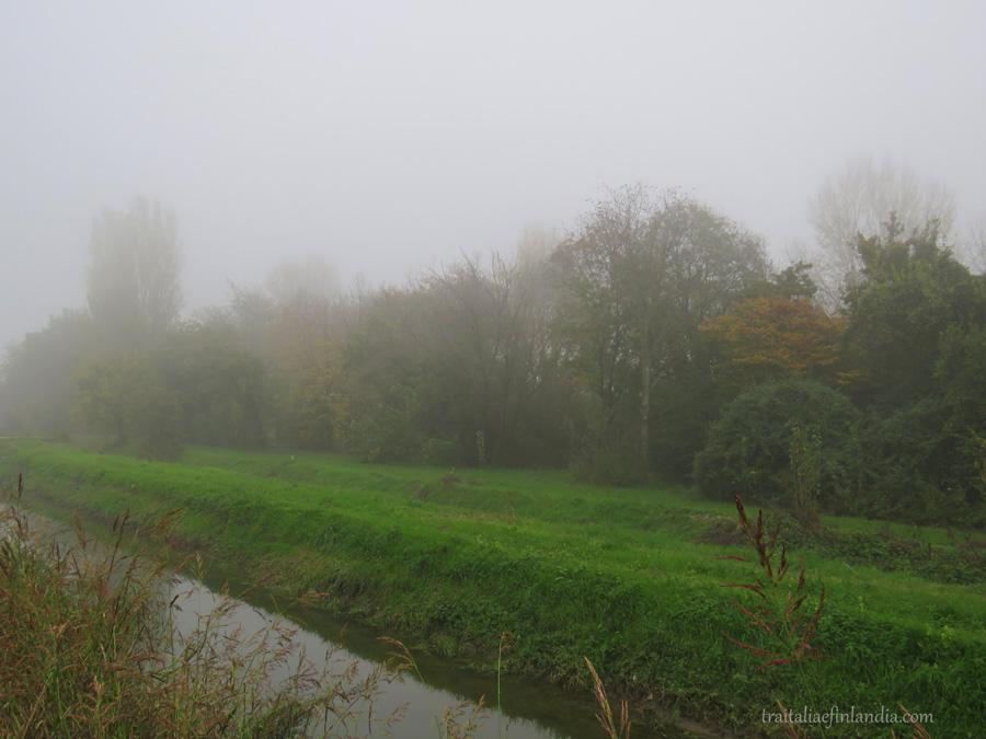 Nebbia (11)
