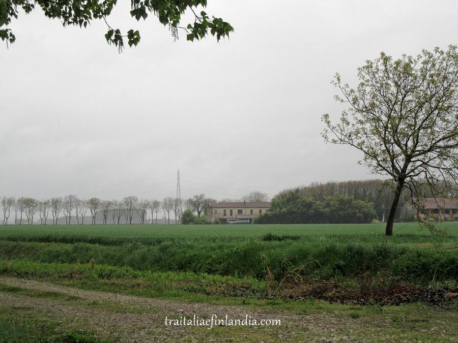 pioggia (2)
